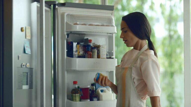3 Best Refrigerator Brands in India in 2020